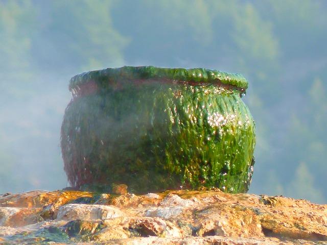 Pot, Cooking Pot, Cauldron, Green, Slick, Slimy, Steam