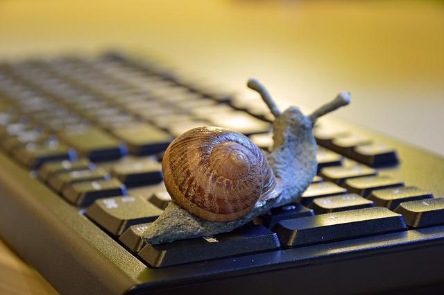 Snail, Shell, Figure, Keyboard, Slowly, Entschleunigung