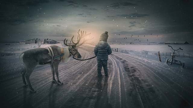 Wintry, Reindeer, Boy, Small Child, Landscape, Moose