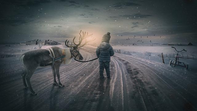 Wintry, Reindeer, Boy, Small Child, Landscape, Moose