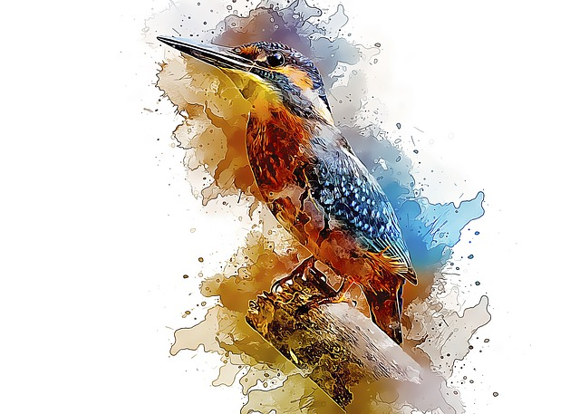 Alcedo Atthis, Common Kingfisher, Bird, Small, Perched