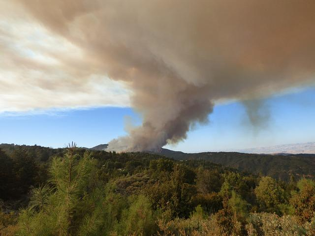 Forest Fire, Smoke, Wildfire, Loma Fire, Disaster