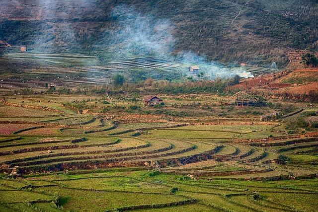 Scenery, Pm, Smoke, Rice Field, Home, Countryside