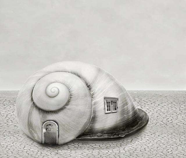 Background, Art, Fantasy, Shell, House, Shells, Snail