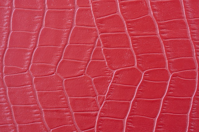 Skin, Red, Become The Symbol, Snake, Texture, Abstract