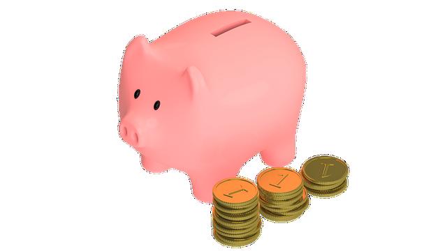 Pig, Animal, Snout, Money, Coins, Piggy, Save, Pennies