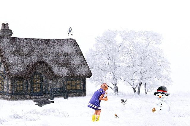 Winter, Snow, Snowfall, House, Girl, Snowman, Animals