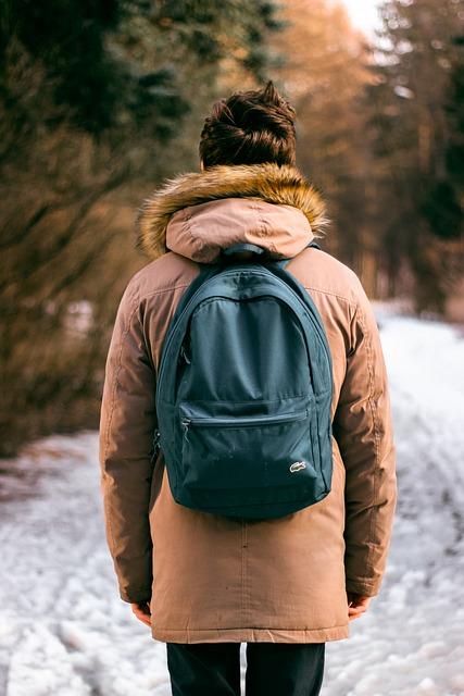 Backpack, Bag, Man, Snow, Winter, Brown Snow