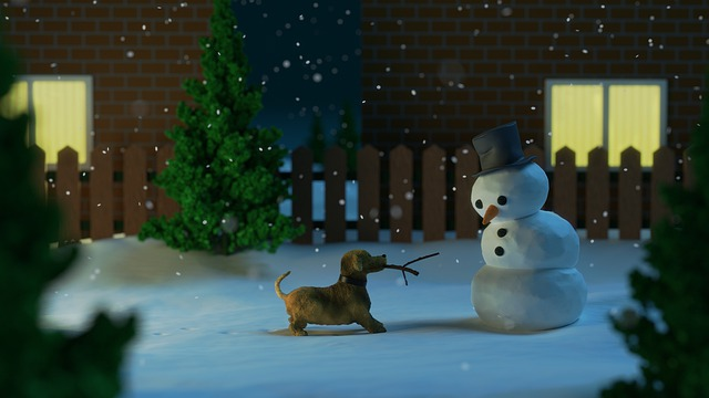 Snowman, Dog, Snow, Snowfall, Snowing, Winter, Pet