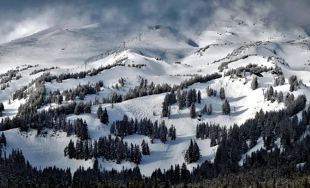 Mt Hood, Oregon, Meadows, Winter, Snow, Forest, Trees