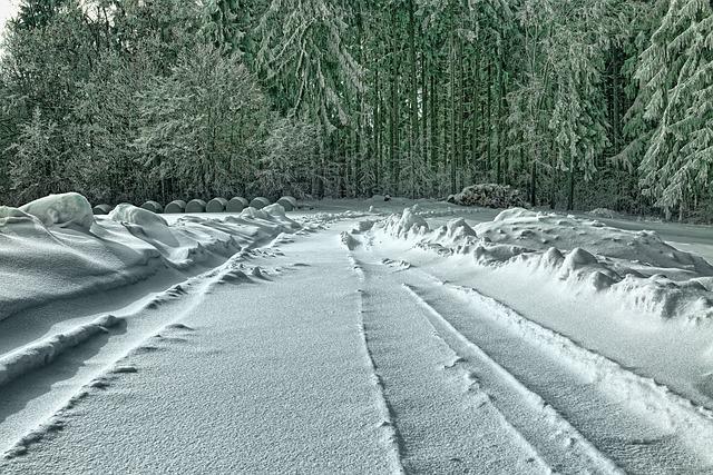 Snow, Winter, Nature, Frost, Frozen, Landscape, Forest