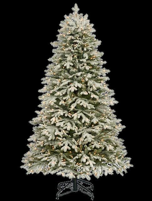 Christmas, Snow, Isolated, Christmas Tree