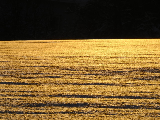 Snow Landscape, Snowfield, Backlighting, Sun, Sparkle