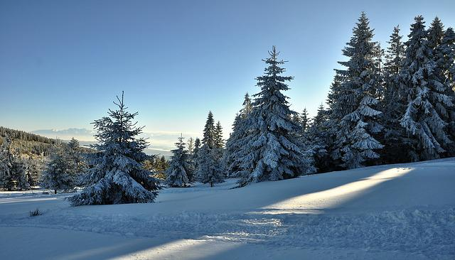 Landscape, Mountains, View, Snow, Winter, Cold, Frost