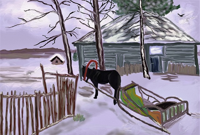 Winter, Russia, Horse, Wintry, Snow Landscape