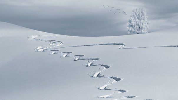 Wintry, Mountain, Snow, Snow Landscape, Winter, Cold