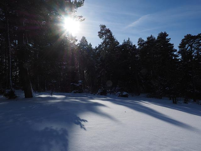 Snow Landscape, Winter, Sun, Shadow, Snow, Cold