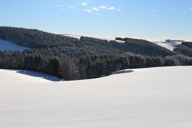 Wintry, Winter Mood, Snow Landscape, Winter Light