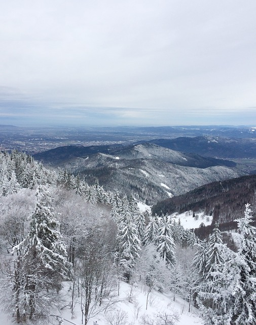Freiburg, Schauinsland, Snow, Winter, Outlook