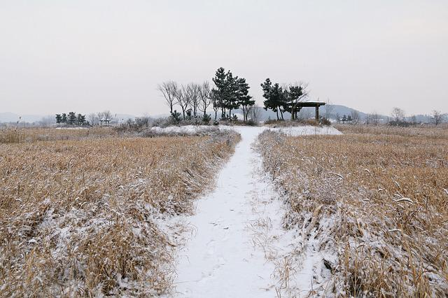Nature, Scenery, S, Some People Don't, Outdoors, Snow