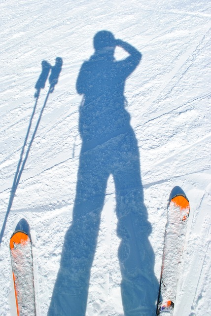Skiing, Skiers, Shadow, Snow, Mountains, Winter