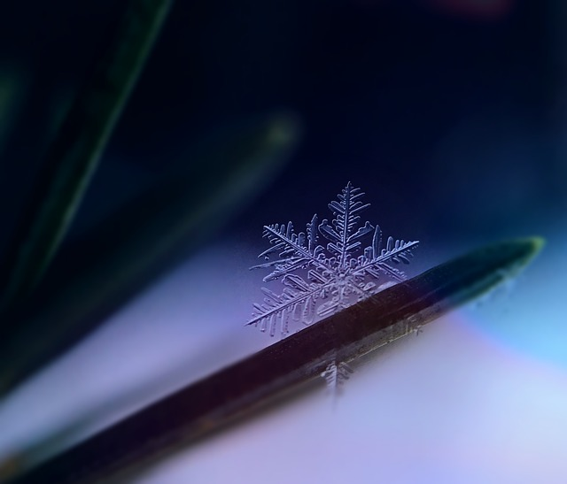 Snowflake, Snow, Ice Crystal, Winter, Frozen