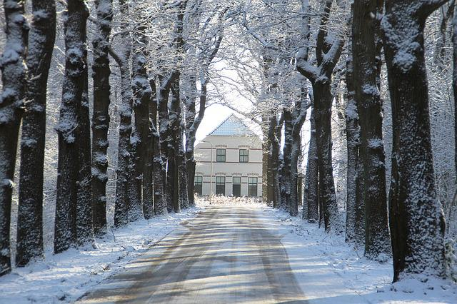 Winter, Snow, Snow Landscape, White, Farm, Rheebruggen