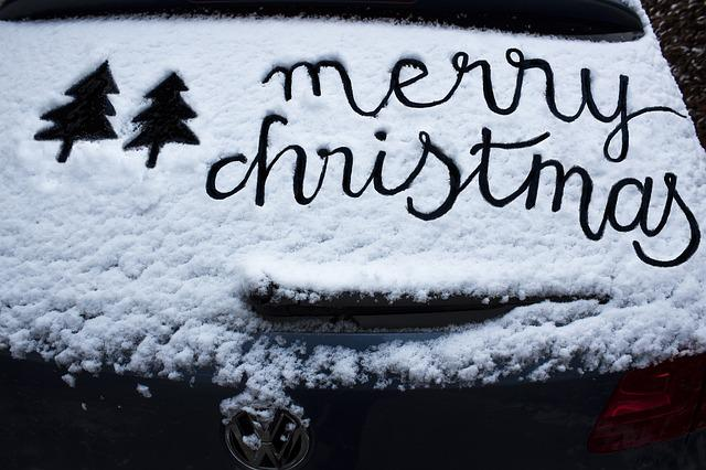 Christmas Tree, Snow, Frost, Car Washer, Winter, Cold