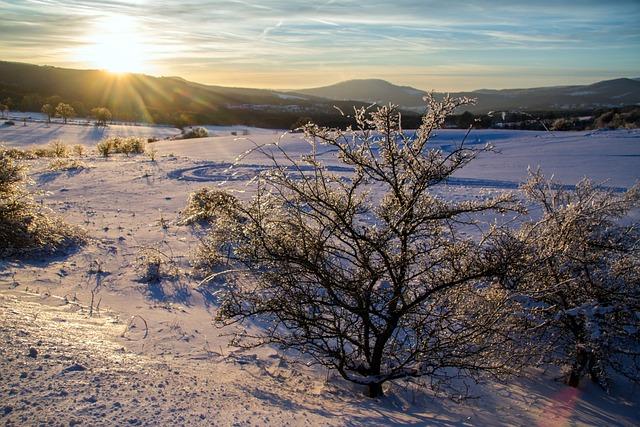 Winter, Snow, Wintry, Hochrhoen, Wasserkuppe