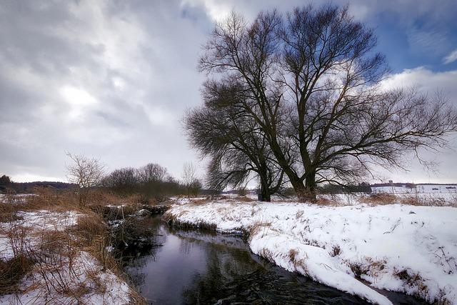 Winter, Bach, Wintry, Snow, Water, Snowy, Creek
