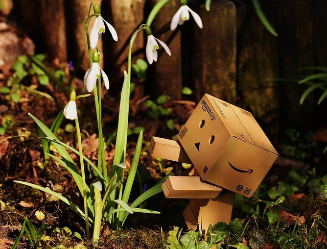 Harbinger Of Spring, Snowdrop, Flower, Danbo, Funny
