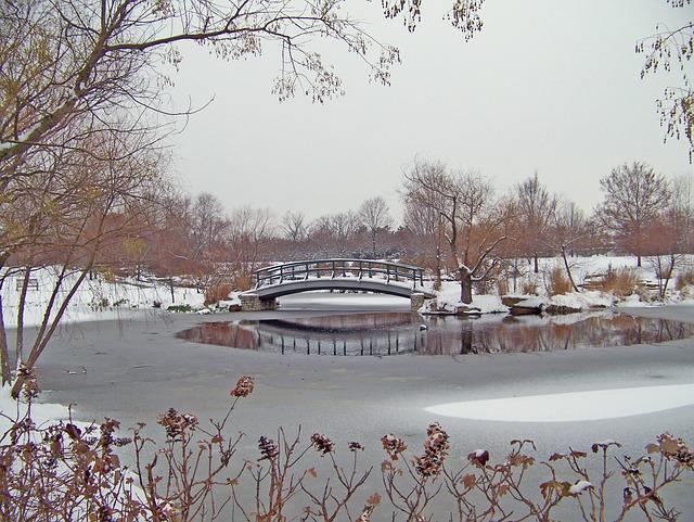 Bridge, Park, Snow, Outdoors, Scenery, Winter, Snowfall