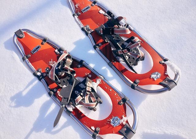 Snowshoe, Sport, Winter, Adventure, Outdoor