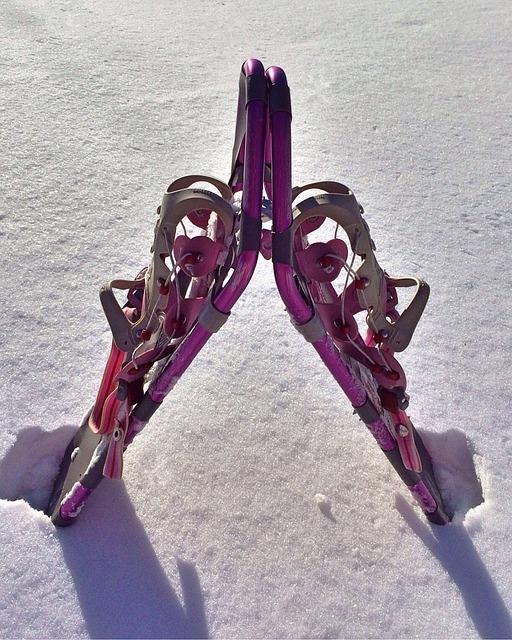 Snowshoe, Winter, Snow, Sport, Outdoor, Equipment