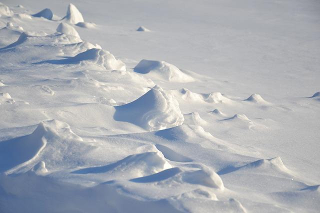 Winter, Field, Snow, Snowy Field, Snowdrifts, Surface