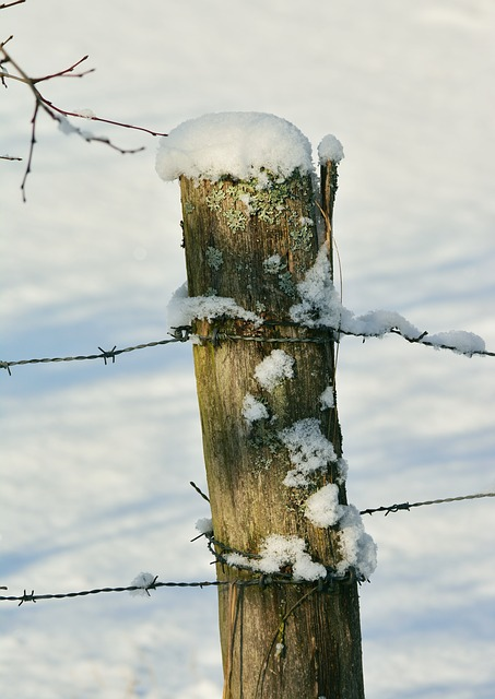Winter, Fence Post, Snowy, Pile, Snow, Pasture