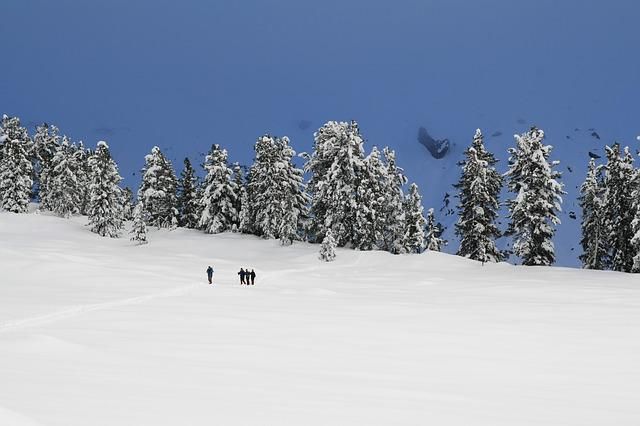 Winter, Snow, Snowshoe, Snowshoeing, Snowy, Nature