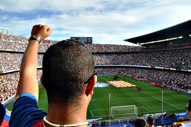 Man, Fan, Person, Football, Soccer, Stadium, People
