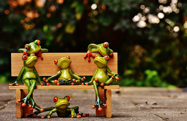Frogs, Sociable, Bank, Bench, Relaxed, Figure, Funny