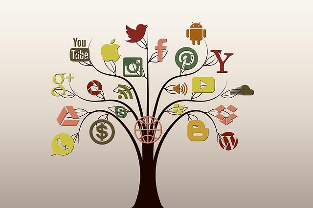 Social Media, Tree, Structure, Internet, Network