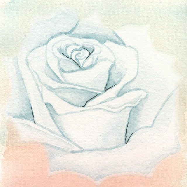 Rose, Background, Watercolor, Blue, Pink, Pastel, Soft
