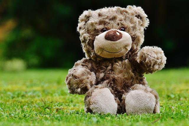 Teddy, Soft Toy, Stuffed Animal, Teddy Bear, Cute