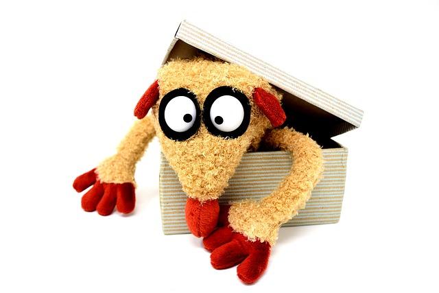 Teddy Bear, Cardboard, Funny, Stuffed Animal, Soft Toy