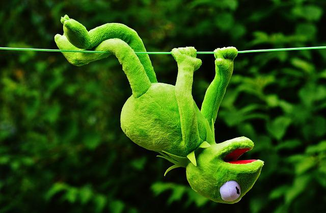 Hang Out, Soft Toy, Kermit, Toys, Fun, Funny, Play