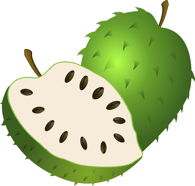 Guanabana, Soursop, Fruit, Exotic, Tropical, Green