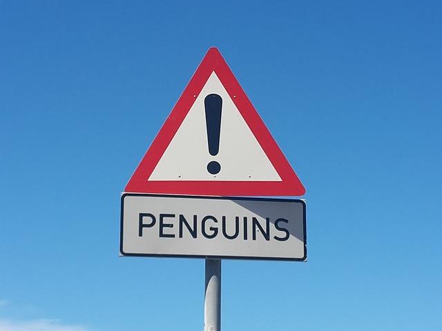 Penguins, South Africa, Beach, Bird, Animal, Cape Point