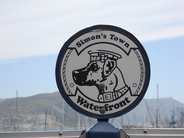 South Africa, Simons Town, Waterfront, Shield, Dog