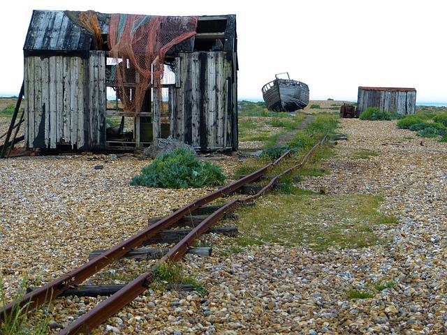 Dungeness, Romney Marsh, England, Kent, South Gland