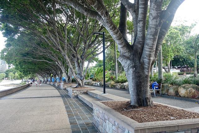 Trees, Shade, Line, Southbank, Brisbane, Walkway