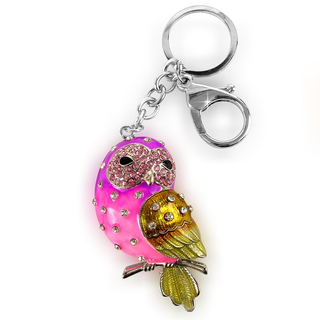 Sowa, Key Ring, Keychain, Key Ring Pendant, Bird, Color